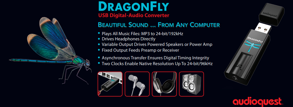Dragon-Fly-Banner